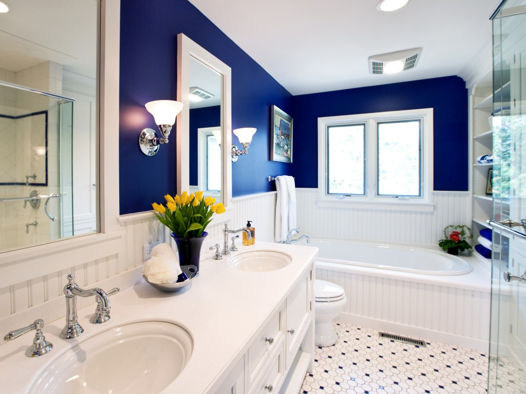 blue-bathrooms-picture-on-bathroom-popular-at-blue-bathrooms-18-1024x768