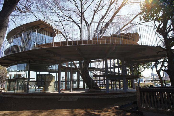 Tetzuka-Architects-Tree-Wrapped-Classroom-Japan-2