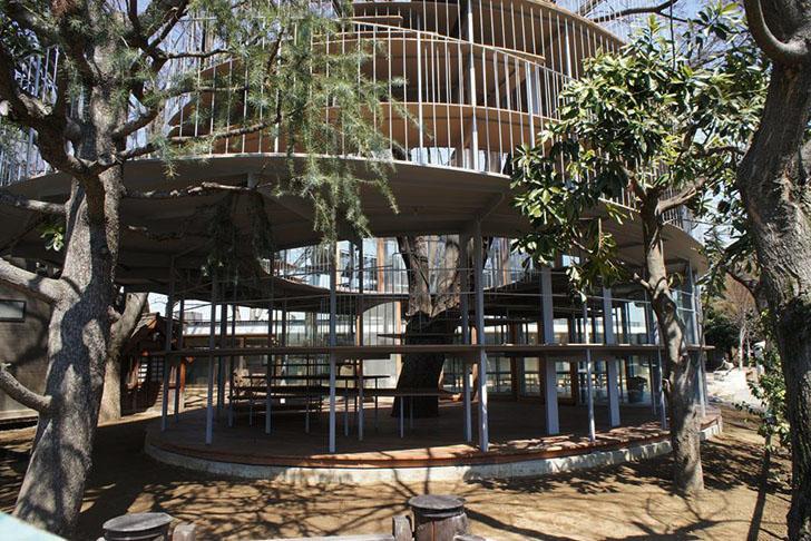 Tetzuka-Architects-Tree-Wrapped-Classroom-Japan-3